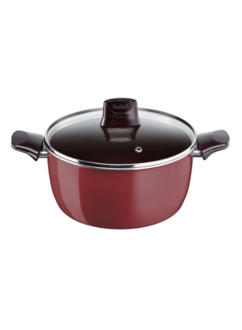 Tefal Pleasure Stewpan 26cm with lid D5055252