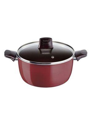 Tefal Pleasure Stewpan 22cm with lid D5024562