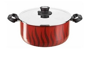 Tefal New Tempo Flame Dutch Oven 26 with SS Lid C5485283