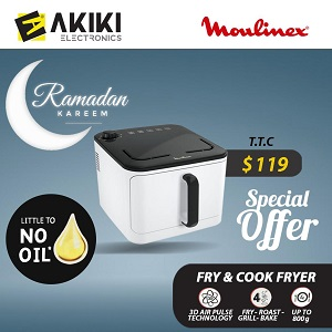 Moulinex fry and cook fryer