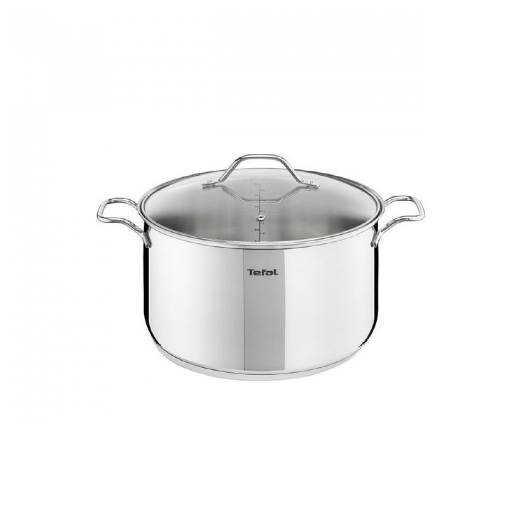 Tefal Intuition XL Large Stainless Steel Stock Pot 26 cm with Lid B9086314
